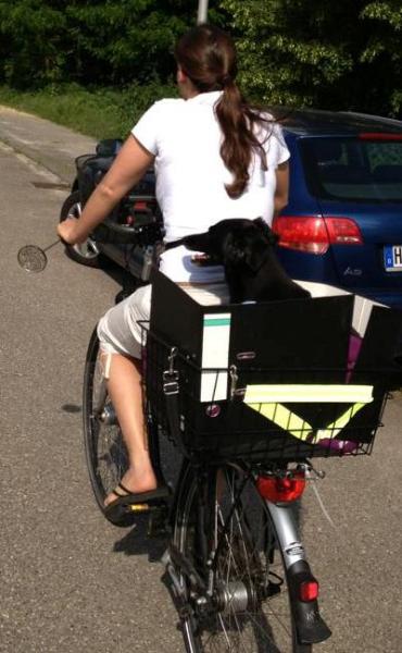 merle_fahrradkorb